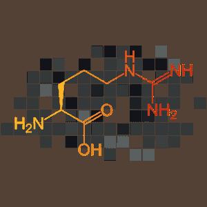 L-Arginine HCL 600MG